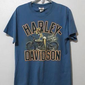 "Harley-Davidson ""Good clean fun""! T-shirt mens M"